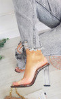 Mhairi Perspex Heels with Black Sole and Strap Detail Thumbnail