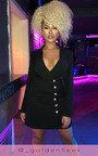 Mia Blazer Dress Thumbnail