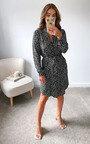 Nessie Printed Mini Dress Thumbnail