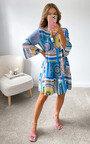 Petra Printed Mini Dress Thumbnail