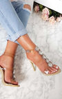 Polly Embellished Perspex Heels Thumbnail
