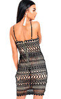 Raina Bodycon Lace Dress Thumbnail