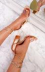 Rosella Perspex Tie Block Heels Thumbnail