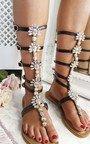Willow Embellished Gladiator Sandals Thumbnail
