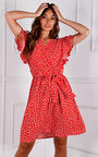 Vanessa Tie Waist Ruffle Sleeve V Neck Printed Mini Dress Thumbnail