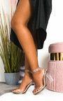 Zarah Perspex Block Heels Thumbnail