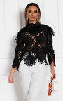 Zia Embroidered Lace Blouse Thumbnail