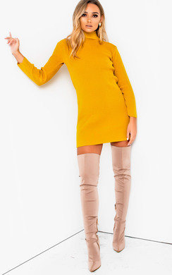 View the Arina High Necked Ribbed Bodycon Dress  online at iKrush