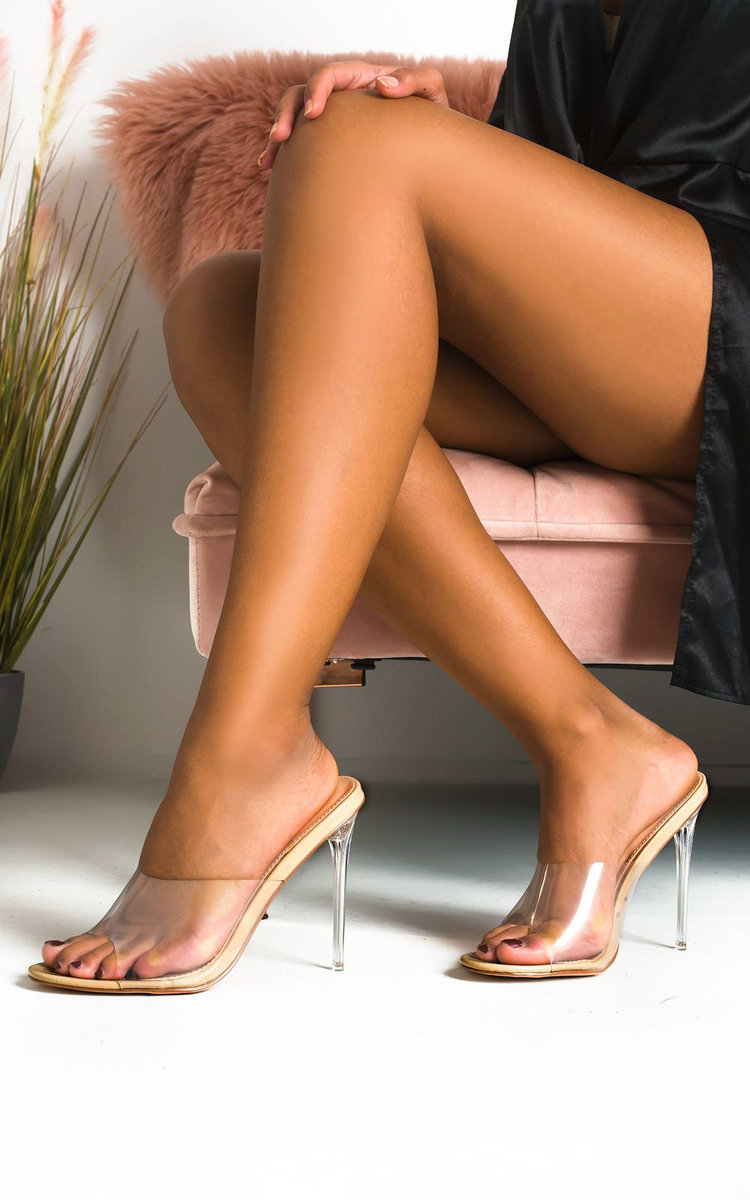 Kara Perspex Mule Heels in Nude